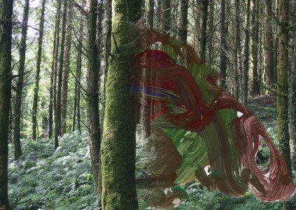 2ll;3p[4a-300h-PHOTOMONTAGE-FOREST