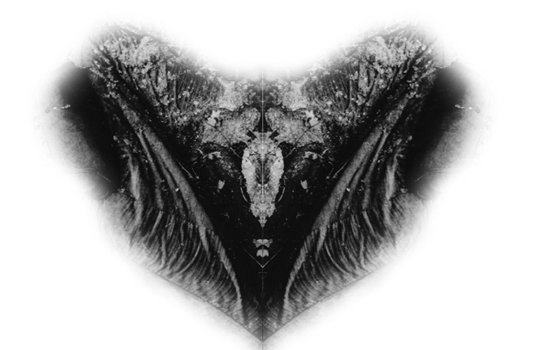 weirdheart-500H-PHOTOMONTAGE-20/9/2010