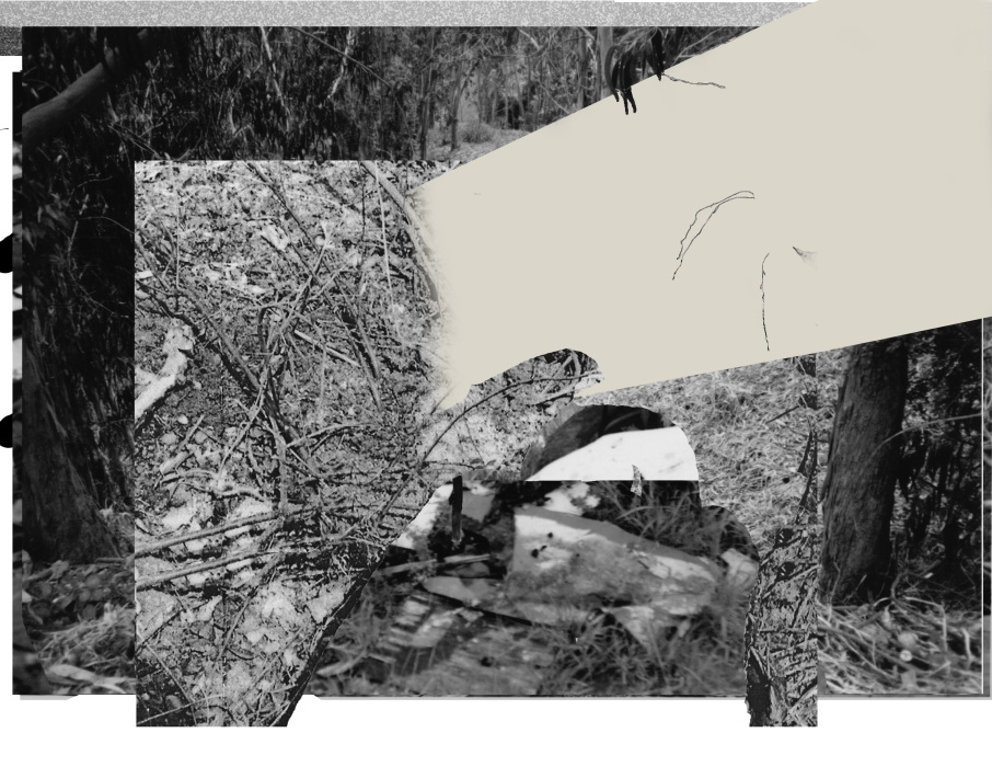 ironblock copy4773-PHOTOMONTAGE-CLEARING-700H