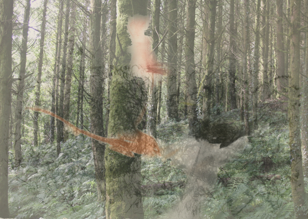 23pjklhh[4-PHOTOMONTAGE-FOREST-700H