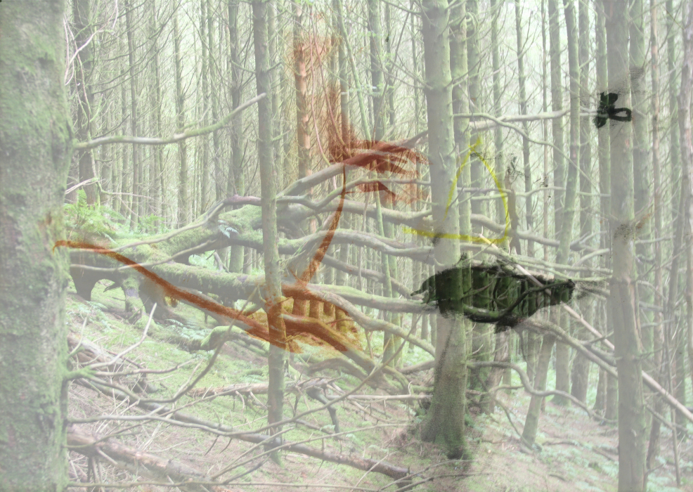 23p[lo4du=PHOTOMONTAGE-FOREST-700H