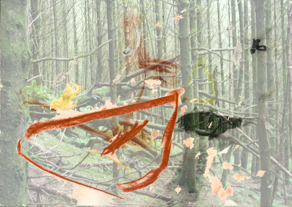2uy3p[4a-PHOTOMONTAGE-FOREST-700H