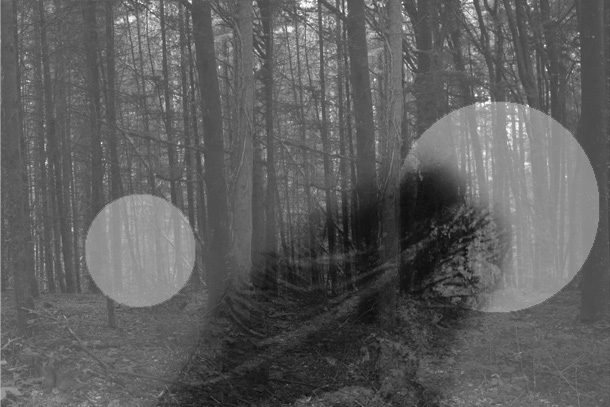 bg-PHOTOMONTAGE-FOREST-407H