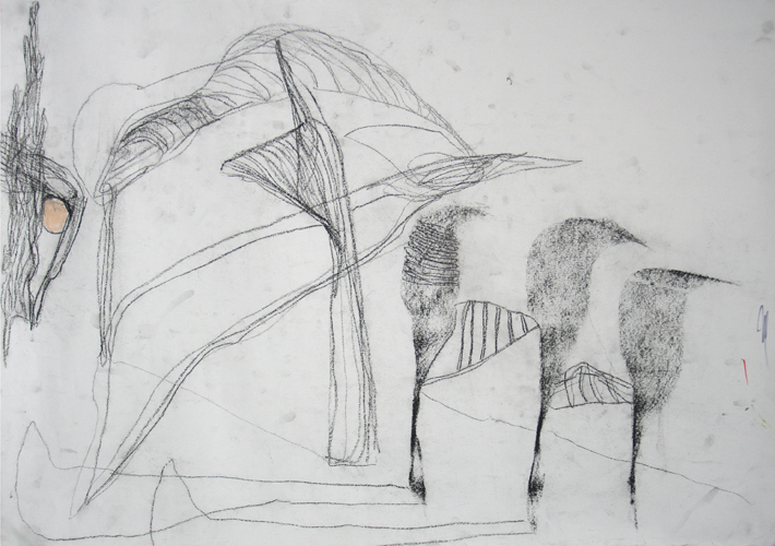 IMG_6148-500H-DRAWING-AUTO-2008