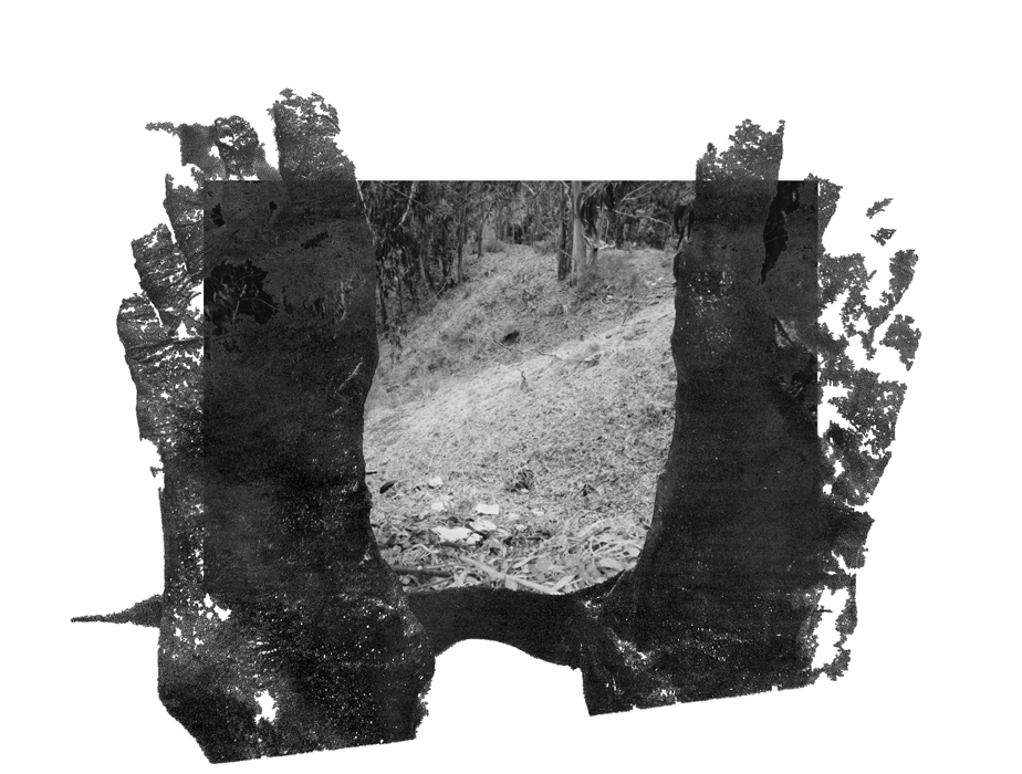 feet0001-700H-PHOTOMONTAGE-CLEARING
