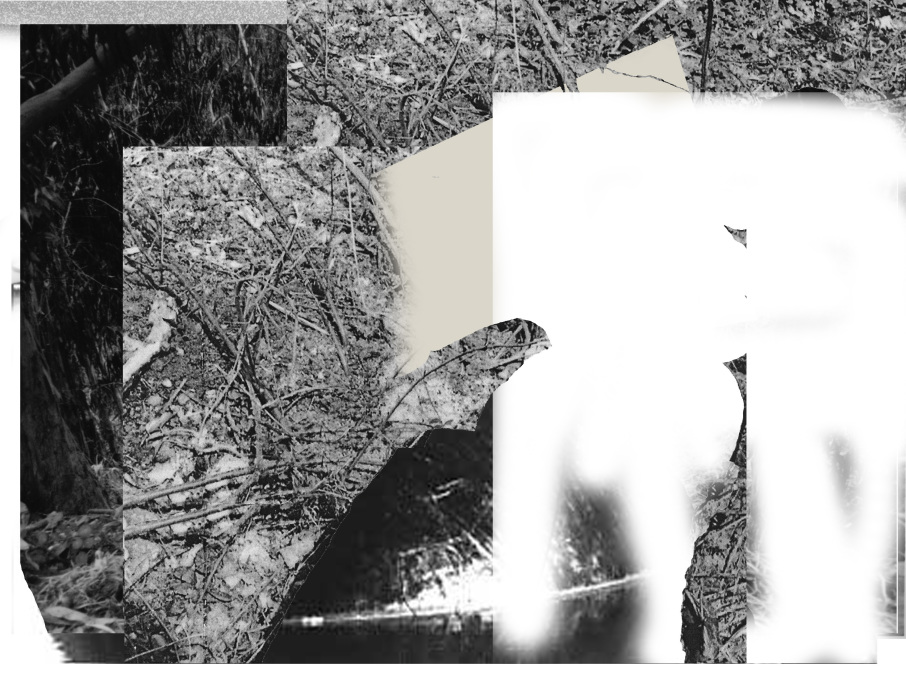 ironblock copy5454-PHOTOMONTAGE-CLEARING-700H