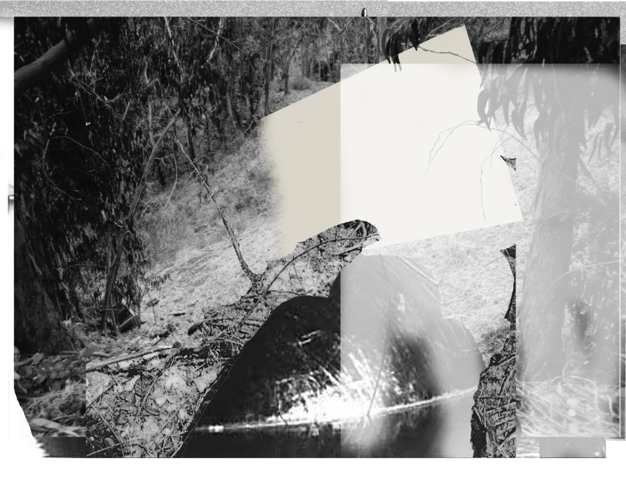 ironblock copy9643-PHOTOMONTAGE-CLEARING-700H