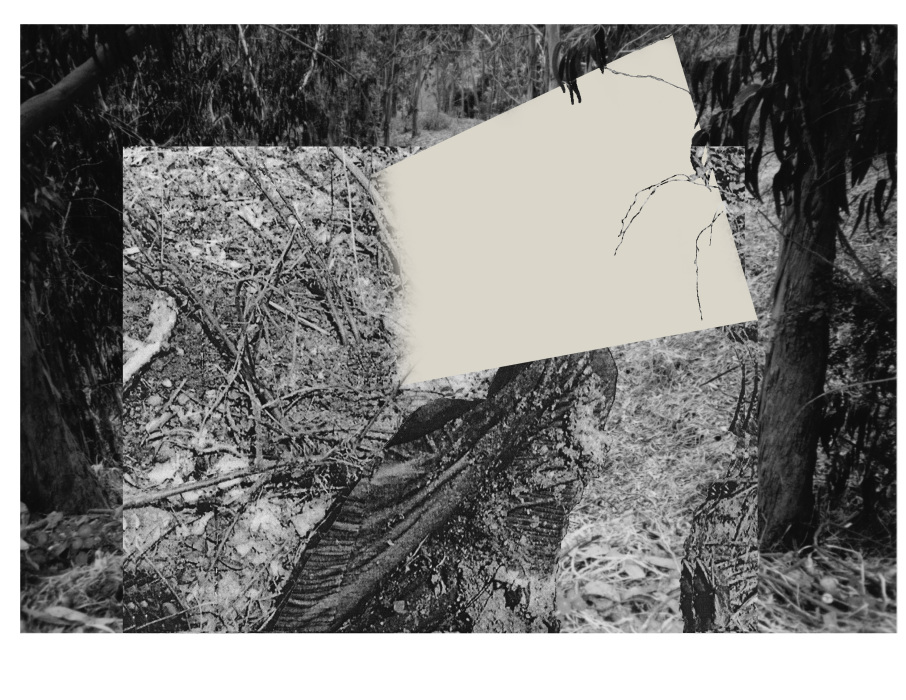 ironblock copy9997-PHOTOMONTAGE-CLEARING-700H
