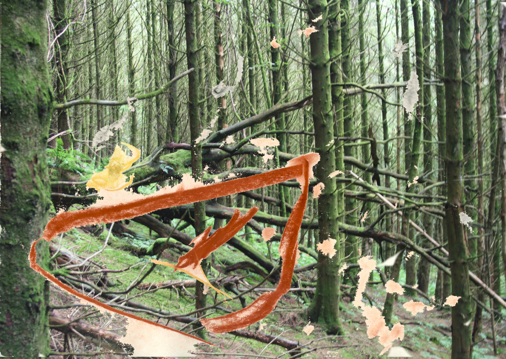 23fup[4iik-PHOTOMONTAGE-FOREST-700H