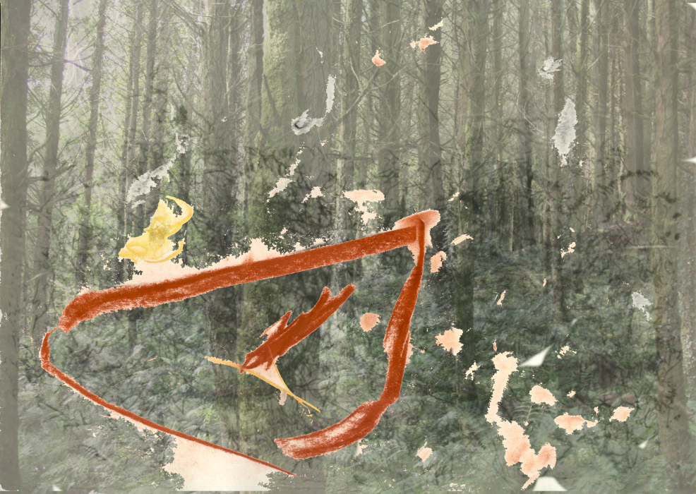 23lfdwp[4-PHOTOMONTAGE-FOREST-700H