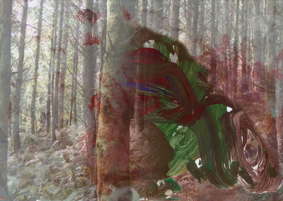 23l;fgyhp[4-PHOTOMONTAGE-FOREST-700H