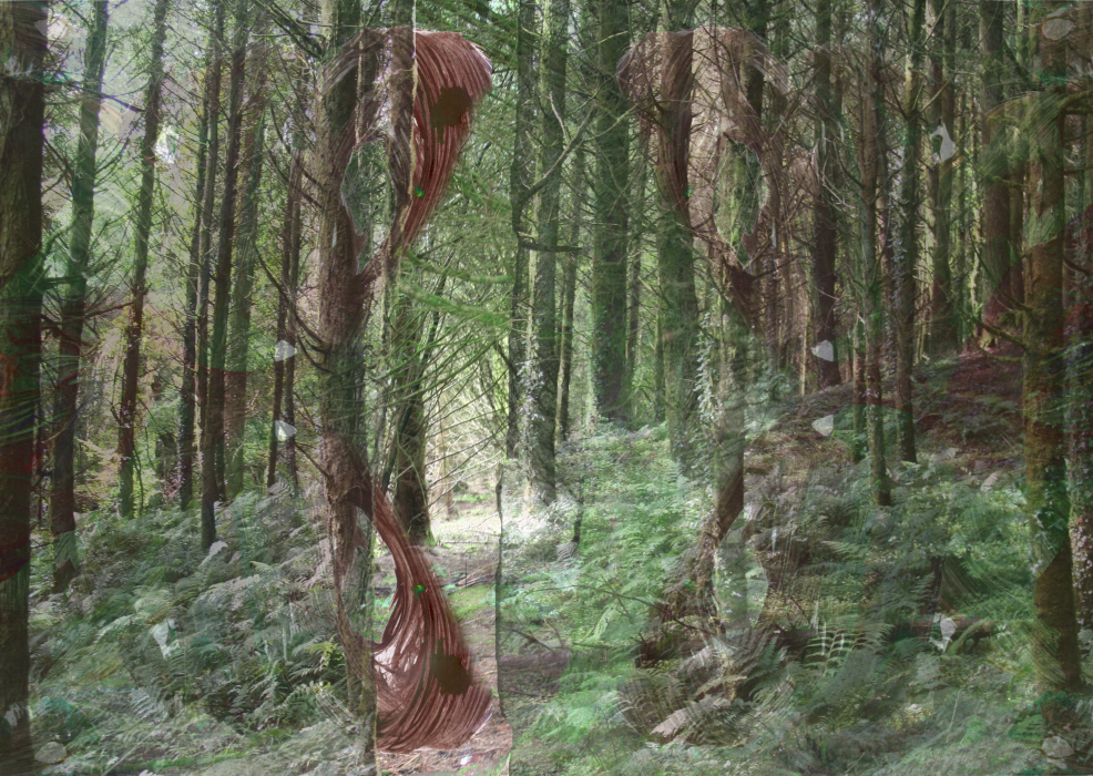 23plld[4-PHOTOMONTAGE-FOREST-700H