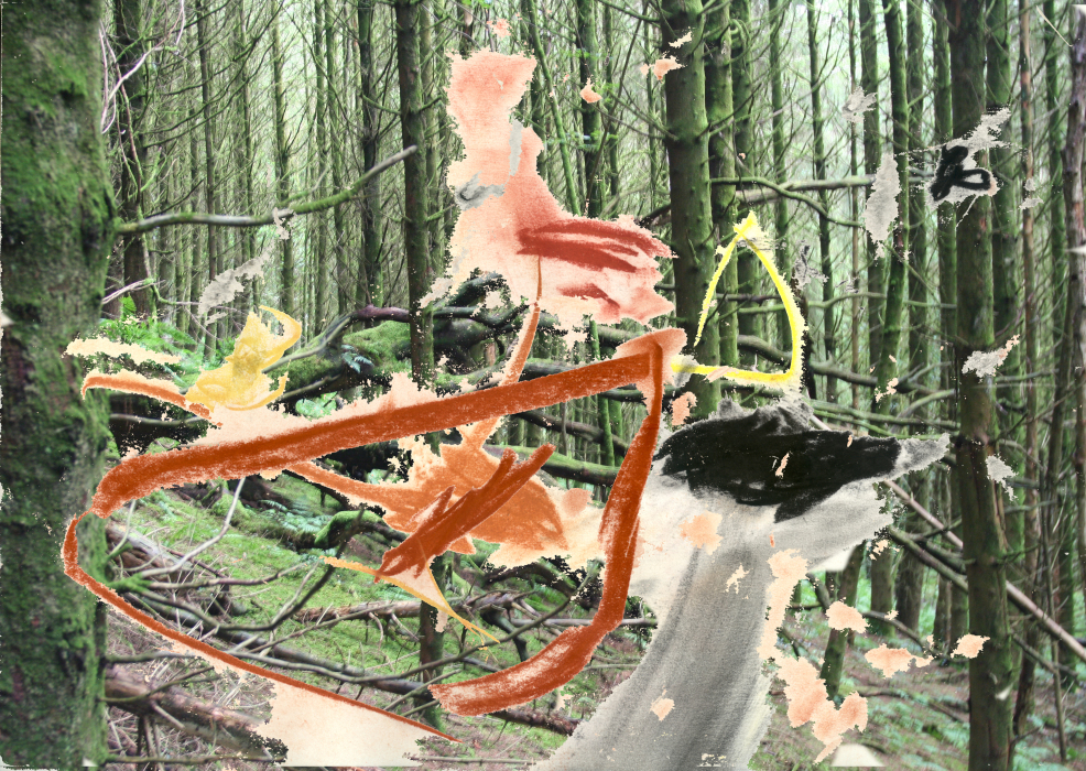 2kl;3p[4ty-PHOTOMONTAGE-FOREST-700H