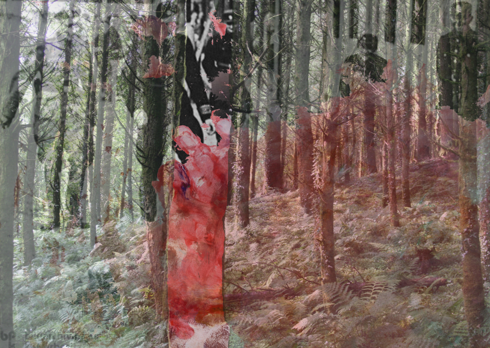 2kl3trp[4-PHOTOMONTAGE-FOREST-700H