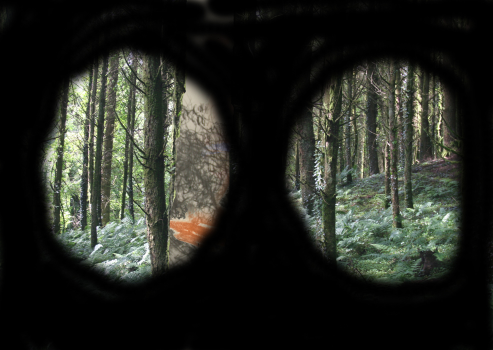 2lolo3p[4a-PHOTOMONTAGE-FOREST-700H