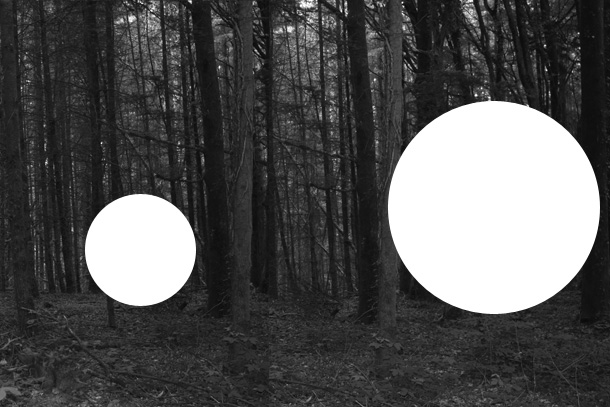 IMG_630k5-PHOTOMONTAGE-FOREST-407H