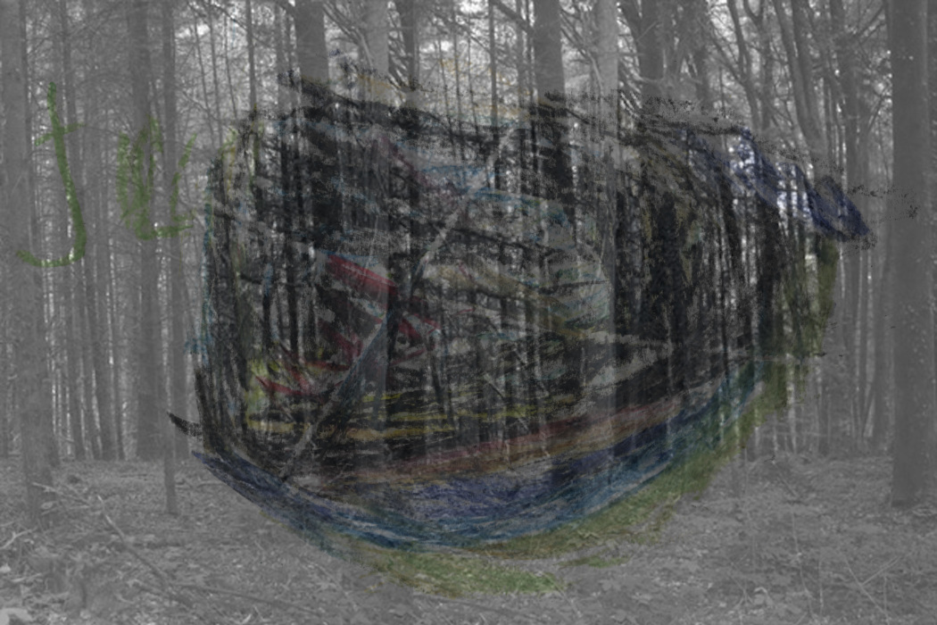 IMG_6331-PHOTOMONTAGE-FOREST-700H