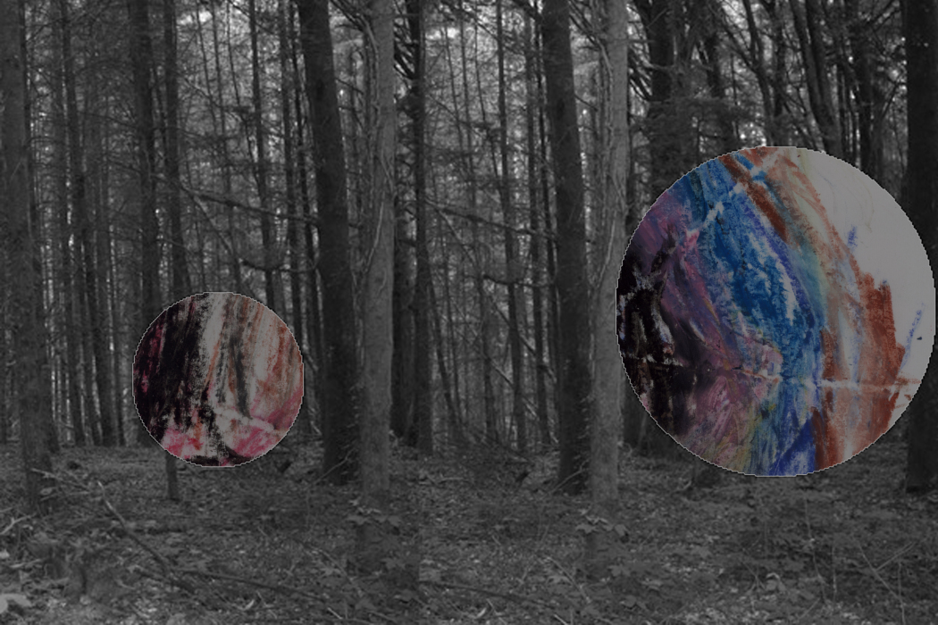IMG_6331bhjk-PHOTOMONTAGE-FOREST-700H