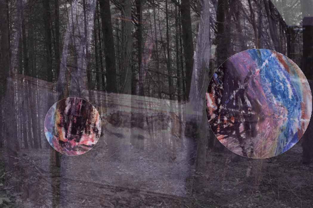 IMG_633uie1-PHOTOMONTAGE-FOREST-700H