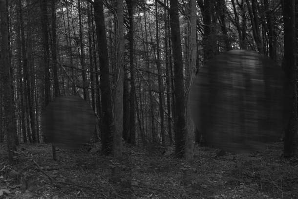 IMG_63hl05-PHOTOMONTGE-FOREST-407H