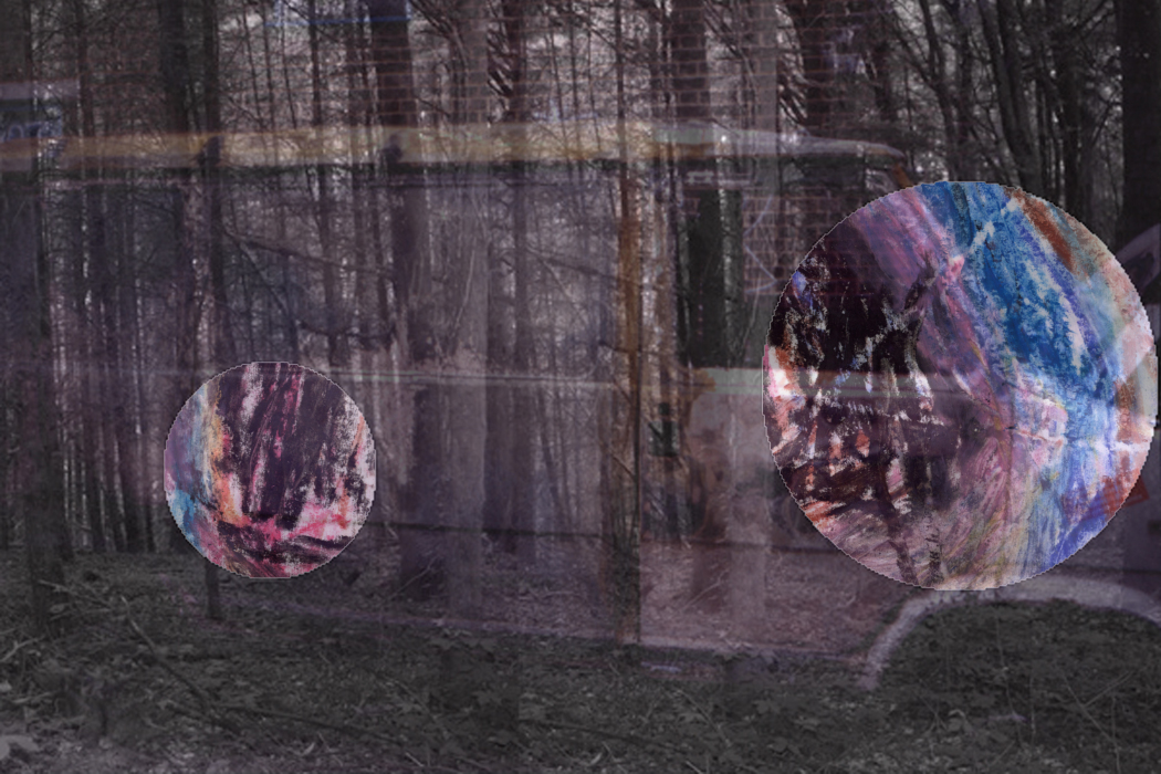 IMG_63hu31-PHOTOMONTAGE-FOREST-700H