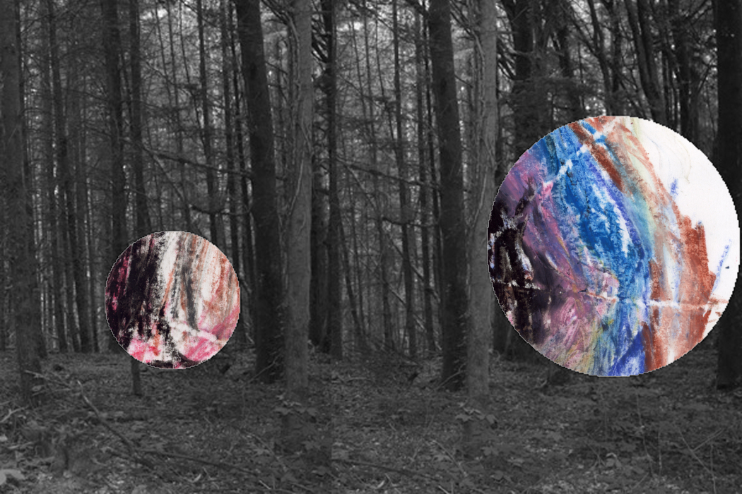 IMG_63op31-PHOTOMONTAGE-FOREST-700H