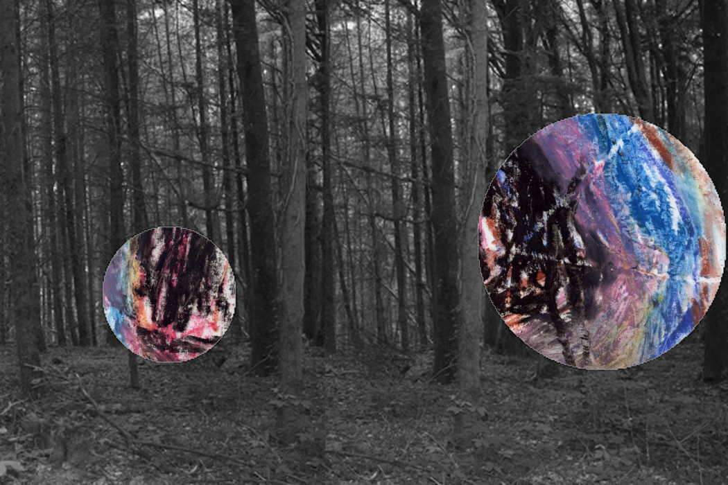 IMG_63sduy31-PHOTOMONTAGE-FOREST-700H
