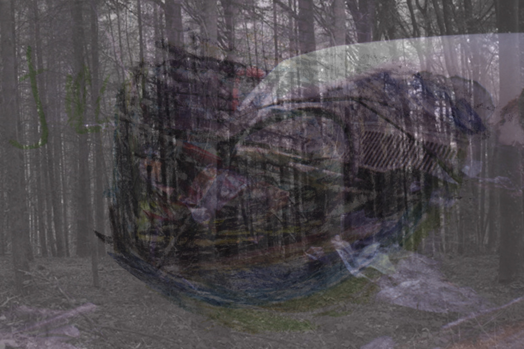 IMG_6l;331-PHOTOMONTAGE-FOREST-700H