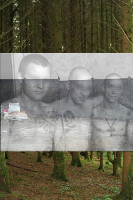 IMG_824klh6a-PHOTOMONTAGE-FOREST-700H