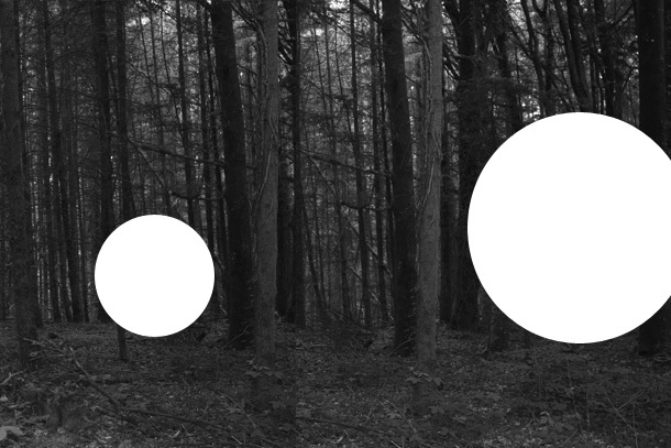 forrest1-PHOTOMONTAGE-FOREST-407