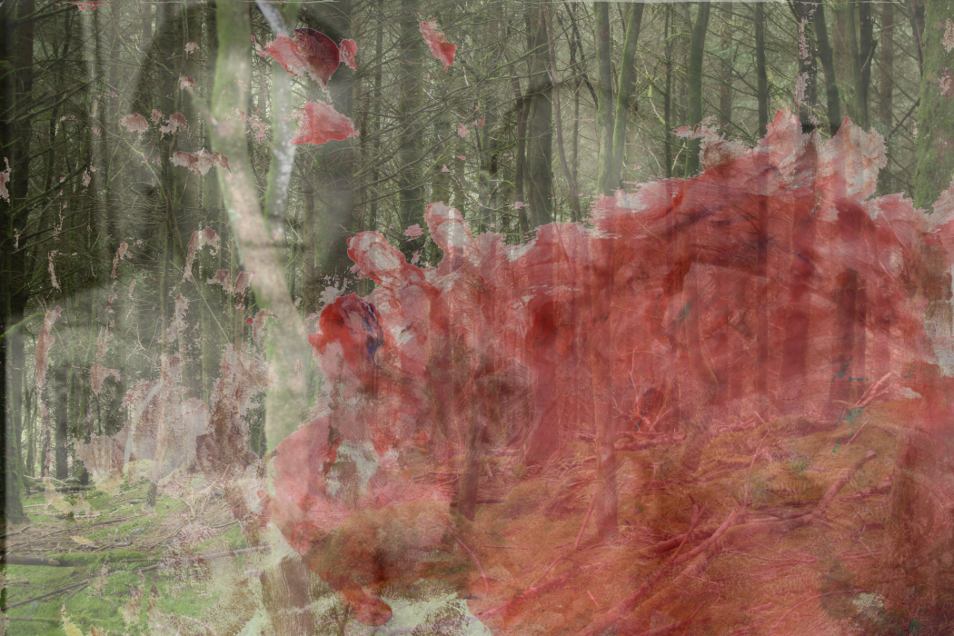 IMG_824..6a-PHOTOMONTAGE-WITH PAINTING 2-700H