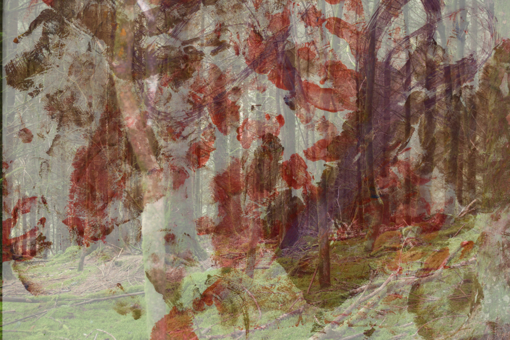 IMG_8l;l;[246-PHOTOMONTAGE-WITH PAINTING 2-700H