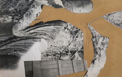 collage with photocopies on MDF, 2005