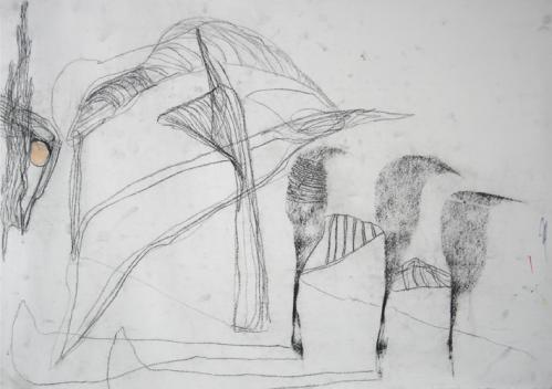 compressed charcoal drawing - 2008